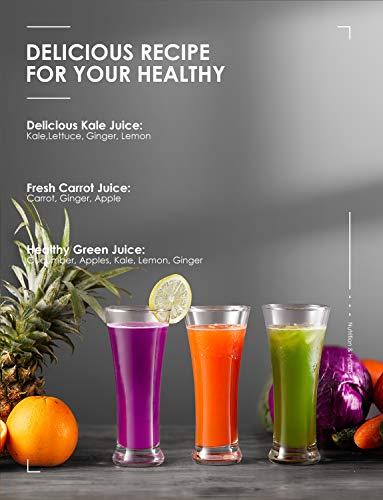 Aicok Licuadoras Para Verduras y Frutas Acero