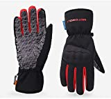 Bruce Dillon Winter Anti-Fall Screen Touch Motorcycle Gloves Waterproof Windproof Motorcycle Riding...