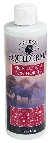 Equiderma Horse Skin Lotion for Rain Rot