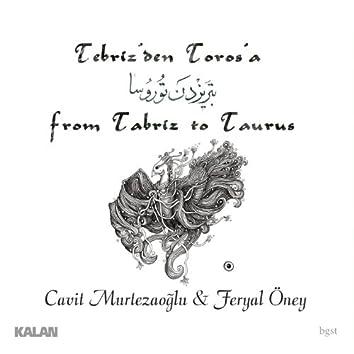 From Tabriz to Taurus