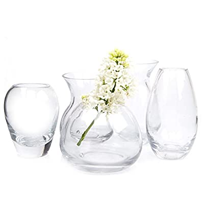 Chive - George, Glass Flower Vase