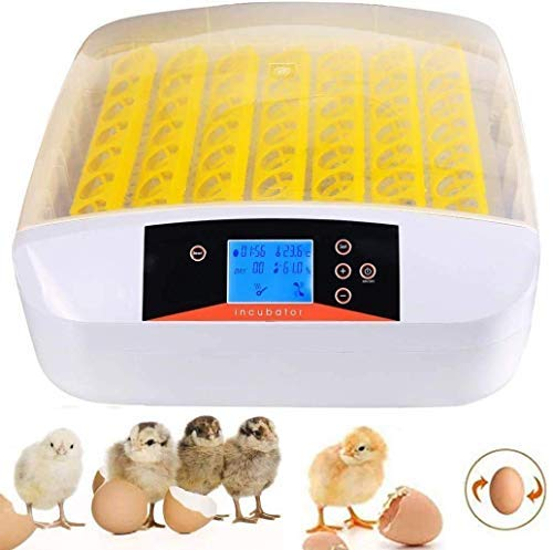 Egg Incubators, incubators for hatching eggs, Digital Fully Automatic Poultry Incubator Hatcher Machine with Egg Turning, Humidity Control, Clear Hatching for Chickens Ducks Goose Quail Birds(56 eggs)