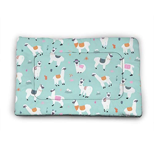 Medium Dog Bed Mat Wasbaar Krattenmatras 35 Inch Niet Slip Huisdier Kussen Pad Llama Mint Groen Oogschaduw, 40