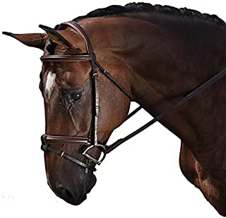M. Toulouse Amelie Eventing Bridle