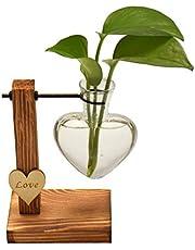 Magiin Dekorativ trähållare med hydroponisk hängande vas glasvas blomvas bordsvas dekorativ vas trähållare