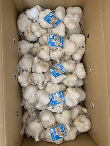 にんにく 青森県産 ホワイト六片にんにく 訳ありにんにくMサイズ5kg