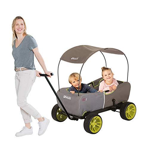 Hauck T93108 Eco Mobil Bollerwagen Handwagen Transportwagen, für 2 Kinder Geeignet, mit Sonnendach und Sitzpolster, Faltbar, Traglast 50 kg Forest Green
