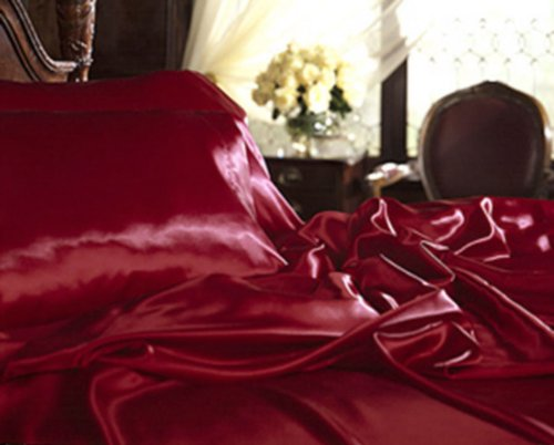 Comfy Deal New Satin Sheet Set with Pillowcases, Twin (Single), Burgundy