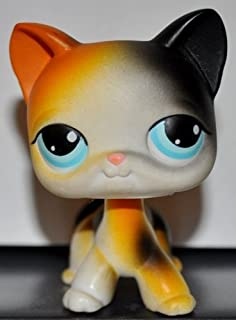 Cat Kitten Shorthair #106 (Four Paws, White, Blue Eyes, Orange/Black Patches) Littlest Pet Shop 2005 (Retired) Collector Toy - LPS Collectible Replacement Single Figure Loose (OOP Out of Package)