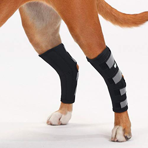 IN HAND Dog Rear Leg Hock Brace, Pair of Canine...