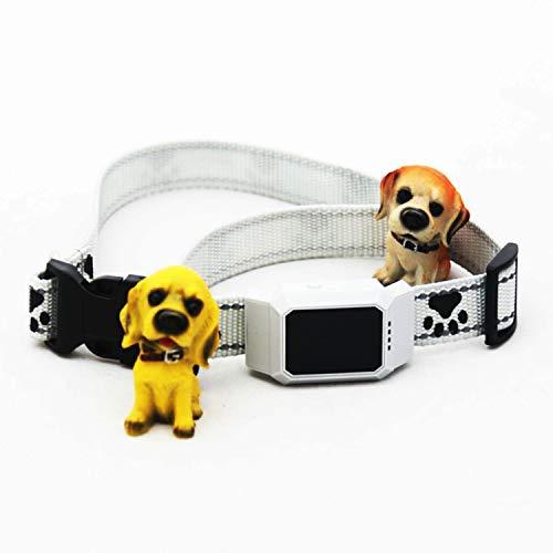 Xch GPS Tracker für Hunde - Leichter und wasserfester Peilsender mit unlimitierter Reichweite,White