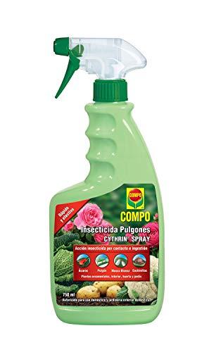 Compo Cytrhin Spray Insecticida Pulgón, para Plantas Ornamentales, de Interior, Huerta y jardín, Envase pulverizador, 750 ml