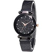 Starry Sky Rhinestone Relojes analógicos de Cuarzo con Banda magnética Corte de Diamante Sandstone Dial Lady Watch