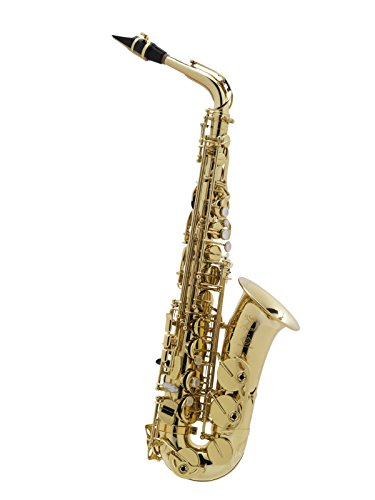 Axos Eb Alt Saxophon made by Selmer in France