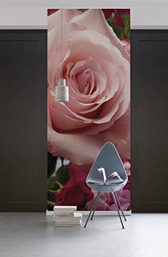 Komar - fleece fotobehang rozengeur - 100 x 280 cm - behang, muur decoratie, bloem, roos, natuur - 154-DV1