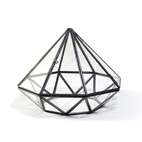 HO-TBO Pflanze Terrarium, Moderne Diamant-Form Geometrische Terrarium Anzeige Planter Dekor Tischaufsatz Garten Vase Container Schwarz Gewächshäuser Gartenarbeit (Color : Black, Size : 19x19x14cm)