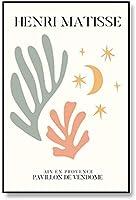 キャンバスプリント壁画アンリマティスポスターとプリント抽象的な色植物壁アート絵画ファッション写真リビングルーム家の装飾40x60cmフレームなし