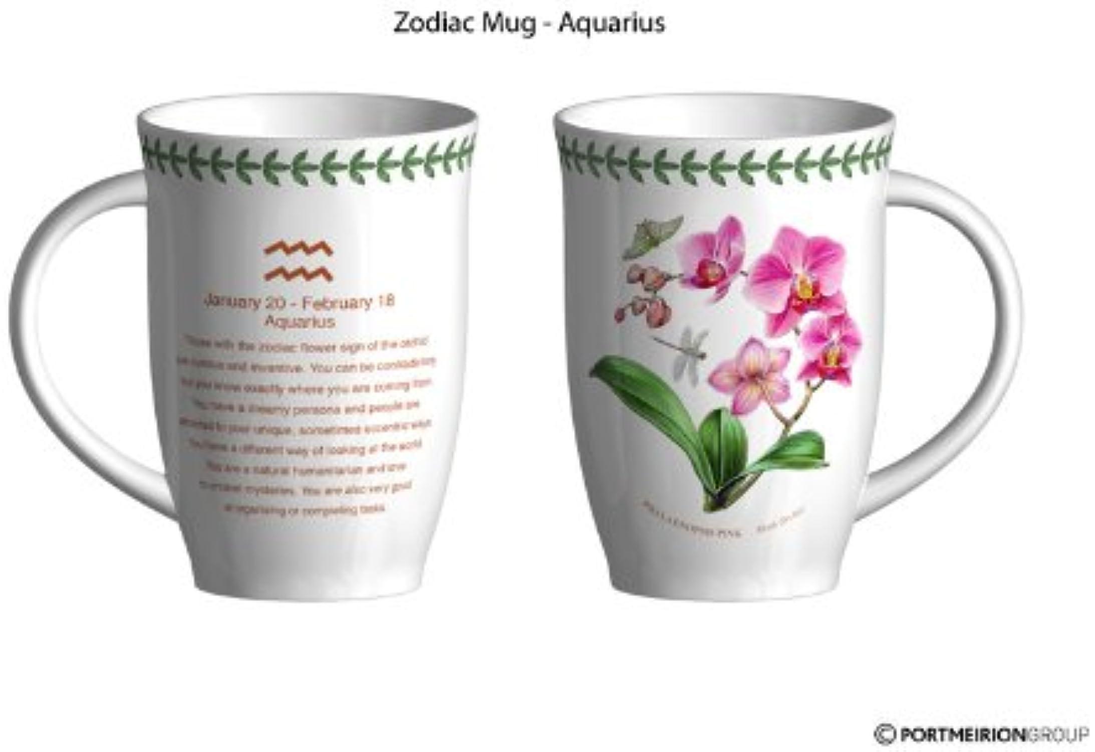Portmeirion Botanic Garden Zodiac Aquarius Mug 206 151 8492 by Portmeirion