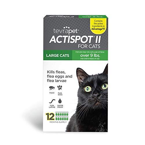 TevraPet Actispot II Flea Medicine for Cats, Topical Flea Treatment, 12 Months of Control (Large)