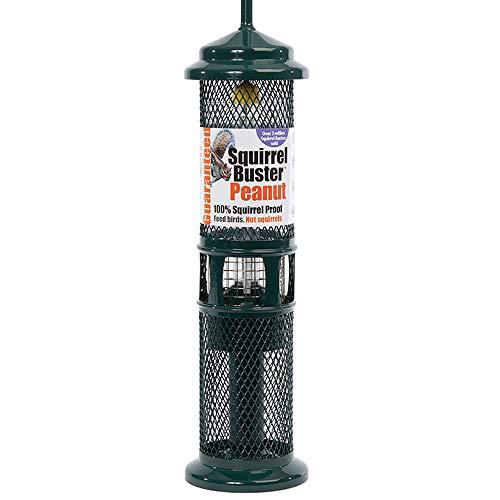 Squirrel Buster Erdnuss-Vogelfutterstation