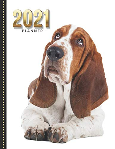 2021 Planner: Bassett Hound Dog Photo / Daily Weekly Monthly / Dated 8.5x11 Life Organizer Notebook / 12 Month Calendar - Jan to Dec / Full Size Book ... Christmas or New Years Gift for Dog Lover
