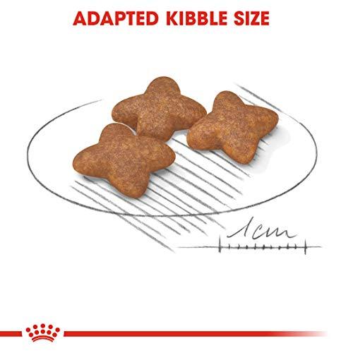Royal Canin 35206 Mini Adult 8 kg – Hundefutter - 5