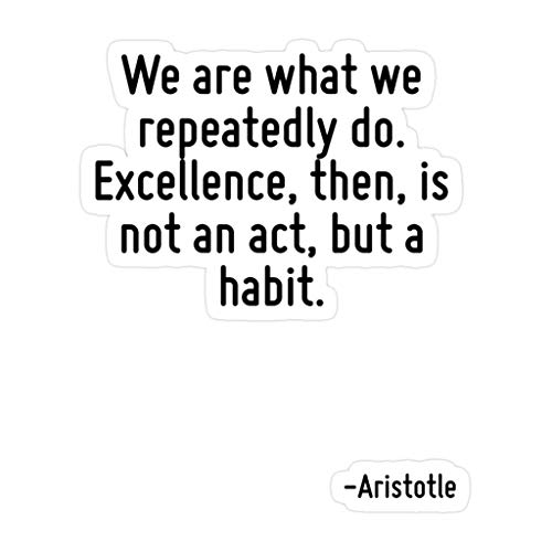 Elizabeth (3 PCs/Pack) We are What We Repeatedly Do Excellence Then is Not an Act But A Habit 3x4 Inch Die-Cut Stickers Decals for Laptop Window Car Bumper Helmet Water Bottle