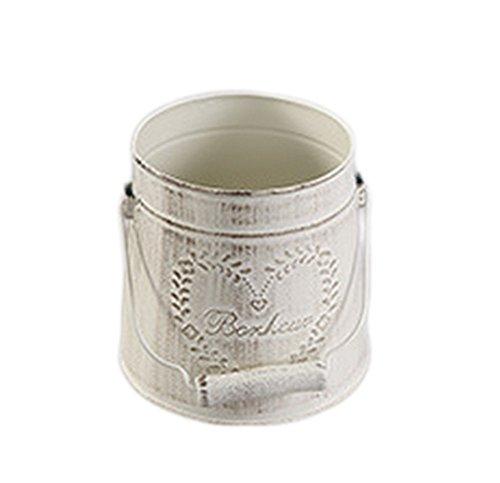 1 x Toruiwa Vintage Cubo de hierro decorativo Barril Blanco Flor maceta de metal maceta suculenta planta jarrón maceta...