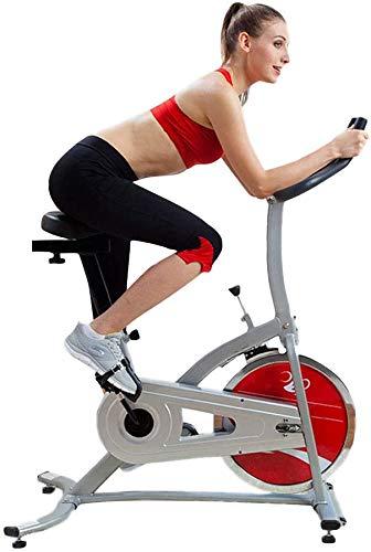 HIGHKAS Leises Fahrrad, Heimtrainer zur Gewichtsreduktion, mit elektronischer Uhr, verstellbarem Sitz, Sicherheitsbremssystem, geeignet für Wohnzimmer, Fitnessraum