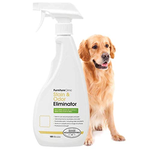 Furniture Clinic Urine Remover | Stain & Odor Eliminator For Dogs, Cats, Pets & and Human Urine Removal | Enzyme...