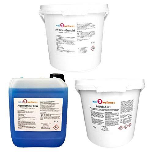 well2wellness Pool Starterset Wasserpflege Set 3-teilig mit Chlor Multitabs 5in1 200g 5kg, pH-Minus Granulat 5kg und Algenverhüter Extra 5l
