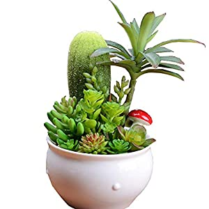 Silk Flower Arrangements J.Mmiyi Artificial Succulent Plants with Ceramic Pot for House Classroom Office Home Indoor Decoration, Great Birthday Gift