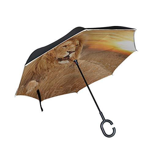 Doble Capa Invertida Plegable Paraguas invertido Gran arrogante Sillas Plegables de león...