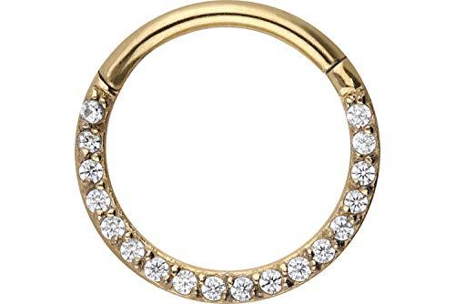 PIERCINGLINE Chirurgenstahl Segmentring Clicker Kristalle   Piercing Ring Septum Helix Tragus   Farb & Größenauswahl