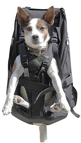 PREMIUM BIG&SLIM DOG CARRIER Hunderucksack als Hundetransporttasche / Rucksack, schwarz - Hochwertiger Hunderucksack für Hunde von 7-16kg