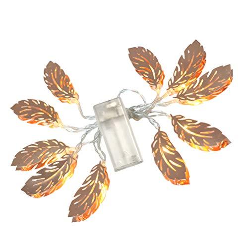 LEDMOMO Guirlande lumineuse LED en forme de plumes en fer forgé pour décoration de mariage, chambre à coucher, anniversaire Blanc chaud 1,5 m