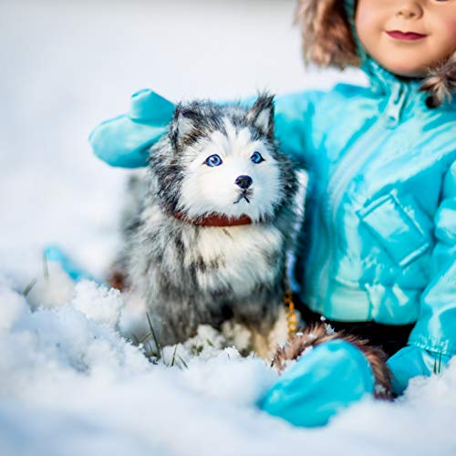 The Queen's Treasures Awesome Pets! Husky Puppy Dog Pet Friend with Leash and Collar Compatible for Play with 18 inch American Girl Dolls.