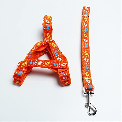 Correa de perro para mascotas con correa de pecho para perros grandes, medianos y pequeños, ancho 1,5 x 120 cm, color naranja