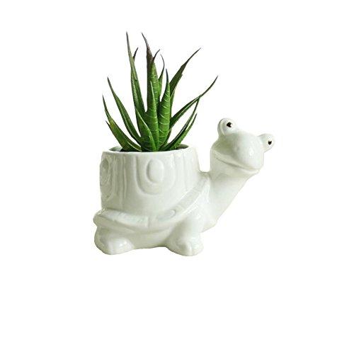 Youfui Cute Animal Succulent Planter Flower Pot Decor for Home Office Desk (Turtle)