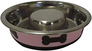 Boomer N Chaser Slow Feeder Spill Proof Pet Bowl