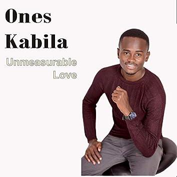 Unmeasurable Love