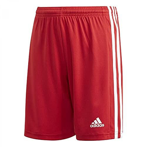 adidas Squad 21 SHO Y – Pantaloni Corti per Bambini, Bambino, Pantalone Corto, GN5761, Tmpwrd/Bianco, 16 Anni