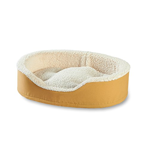 Happy Hounds Oliver Foam Dog Bed