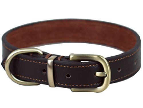 Tellpet Real Leather Dog Collar