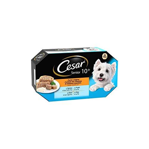 César Barquettes en gelée 4 variétés pour chien - Les 4 barquettes de 150g