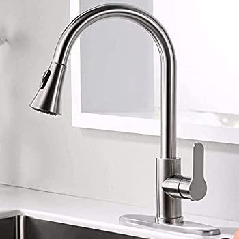 Amazing Force Kitchen Faucet with Pull Down Sprayer