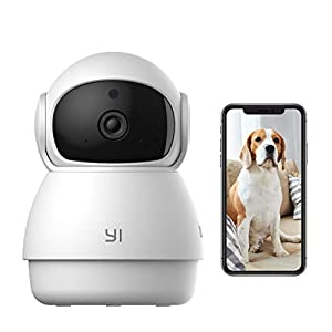 YI Pet Camera Dog Camera with Phone App Pet Dog Cat Puppy Cam Monitor Two Way Audio and Video, Pan/Tilt/Zoom, WiFi, Night Vision, Sound Motion Detection, Wireless, Works with Alexa and Google