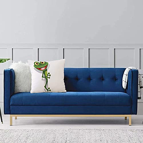 Comode federe e fodere per cuscini,Cartoon, Jolly Frog con maggiore occhio lucertola Gecko Smily Childish Funny Cartoon Artwork, Fern G Per la decorazione del divano letto 1 pezzo 40x40cm
