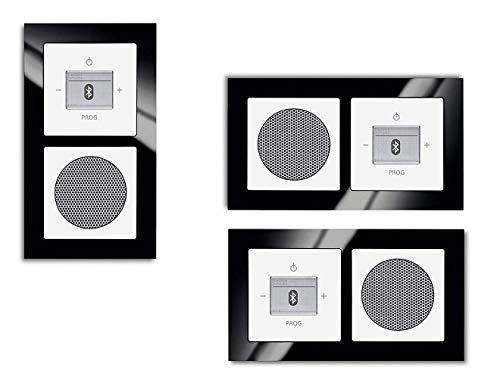 Busch Jäger Unterputz Bluetooth Radio 8217 U (8217U) Schwarz Glas Rahmen + Future linear Studioweiß // Radioeinheit + Lautsprecher + 2-fach Rahmen 1722-825 + Abdeckungen
