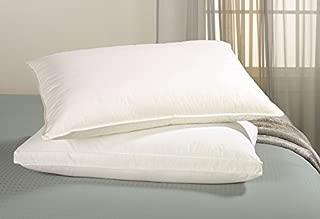 Best scandinavian down pillows Reviews